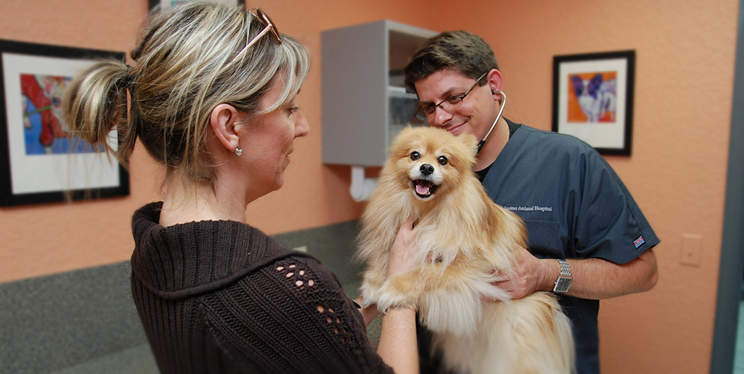 Jupiter Animal Hospital, Jupiter FL