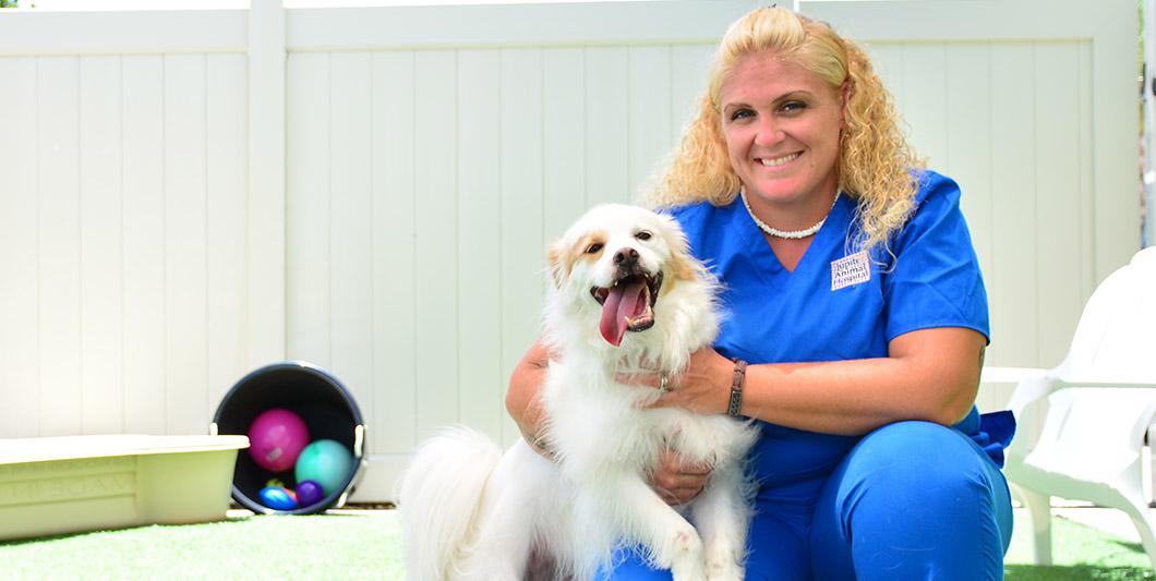 Request Dog Boarding at Jupiter Animal Hospital