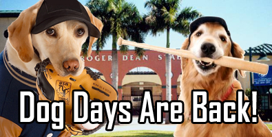 Dog Days of Summer are Back!