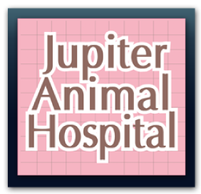 Jupiter Animal Hospital in Palm Beach County FL